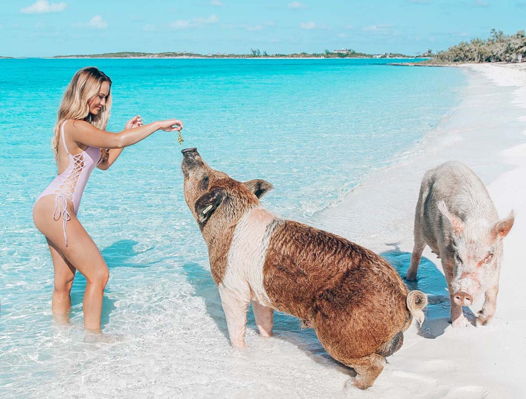 Lauren Nicolle, Denver Fashion Blogger, Staniel Cay, Bahamas