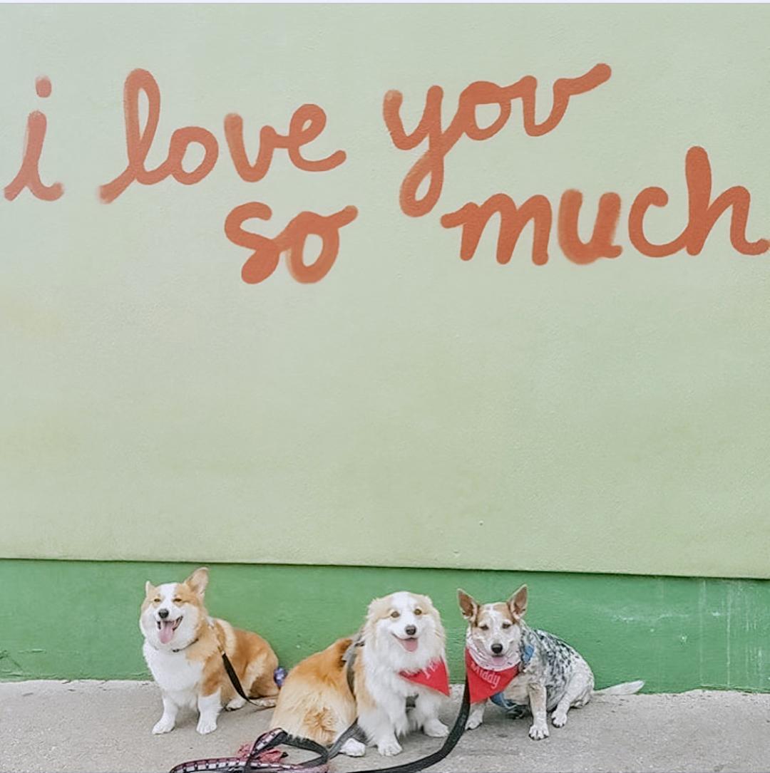 lauren_nicolle-austin-i-love-you-wall